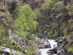La rivière de Mantet