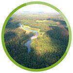 Der Fluss Krutynia