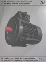 Elektromotoren » Einphasenmotoren » Anlaufkondensator-schwerer Anlauf » 4 polig (ca. 1450 U/min) BK/AK » B3/5 (Fuß/Flansch)