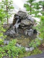 Bonsai Wasserlandschaft