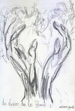les oliviers de Les-Baux-de-Provence