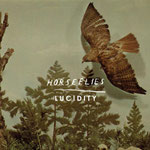 HORSEFLIES – Lucidity
