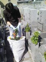 お寺ボランティア(お墓の掃除)