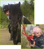 Der Pferdeknoten sorgt für Verwirrung