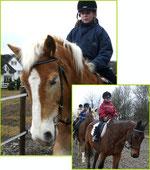 Kleine Mädchen auf großen Pferden
