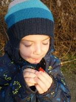 Kinder lieben den süß-säuerlichen Geschmack