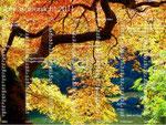 PC/GEOS Desktop Japanischer Herbstgarten