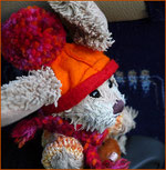 Cäsar als Vikin-Rabbit auf der Fahrt zum Gullfoss