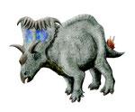 Bild eines Kosmoceratops