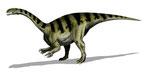 Bild eines Plateosaurus