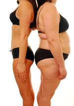 肥満ダイエット体脂肪