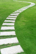 Psychotherapie ist ein Prozess- ein Weg, eine Richtung