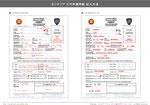 カンボジアビザ申請用紙の記入方法PDF版