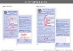 カンボジア 税関申告書の記入例PDF版