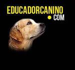 web del educador Óscar Gil