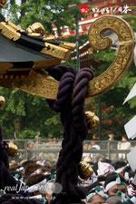 三社祭・本社神輿 一般宮出し@2012.05.20