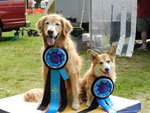 NJ Dog Trainers dogs win Championship