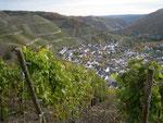 Blick auf Dernau, Ahrtal