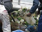 2009年海底ごみ回収底引き網体験学習