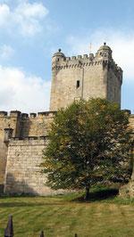 Burg Bentheim, Bergfried