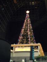 京都駅 特大クリスマスツリー