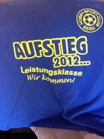 Das Aufstiegsshirt 2012