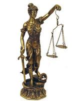 Участие специалиста в судебном процессе
