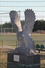 Mitglieder sammeln für den Adler (Klicke auf das Bild)