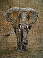 Elefant von vorne auf Baumrinde gemalt