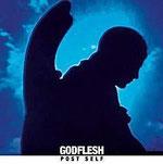 Godflesh - Post Self