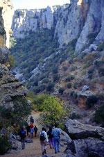 Naturschutzpark Los Alcornocales