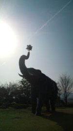 4月2日 上野美術館のぞうさん