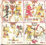 Lámina 59 del códice Borgia, muestra información de elementos del día y la noche, el tlakuachitl es un animal de vida nocturna, por eso este guerrero se muestra en color obscuro.