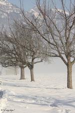 Schnee so weit das Auge reicht!!!