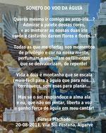 fado by Teresa Machado