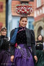 Landesfestumzug 2014 in Waiblingen
