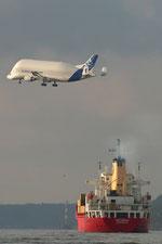 Beluga überfliegt die Elbe im Landeanflug