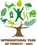 2011年は国際森林年