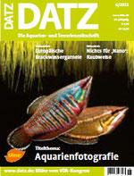 Datz 06-2011