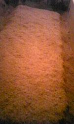 手入直後の米糠酵素風呂。フカフカです。