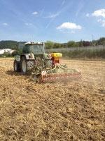 Bodenbearbeitung mit Grubber und gleichzeitiem Ausbringen von Saatgut oder Dünger