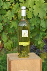 Photographie d'une bouteille la vigne de Louis du Domaine Betbeder