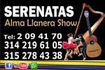Grupo Alma Llanera Show 3142196105