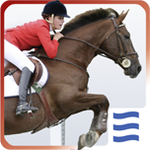 Icon Riding Star App
