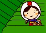 茶摘み(八十八夜)