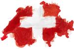 Autoverwertung Schweiz