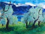 Gardasee mit Olivenbäumen