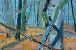 Wald 20x30cm
