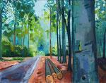 Waldweg mit Baumstämmen 100x130 cm