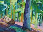 Wald/Baumstämme 100x130cm